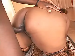 Sensual chubby ebony fucks with guy bbw sex